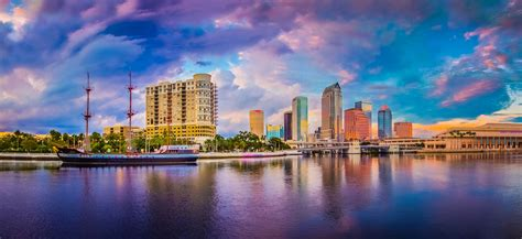Top Things to Do in Tampa Bay   WhereTraveler